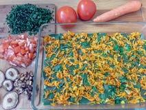 Grünes Lasagnekochen der Nesseln Lizenzfreie Stockfotografie