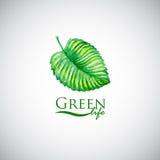Grünes Lebenaquarellblatt mögen Logoikone Stockfotografie