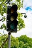 Grünes Licht der Ampel auf dem Pfosten mit dem Baum und dem blauen Himmel Lizenzfreies Stockfoto