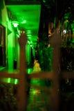 Grünes Licht der Motelgasse Stockfotografie