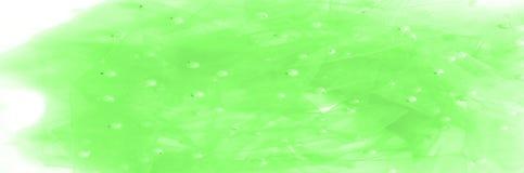 grünes lichtdurchlässiges Gewebe, gestickt mit Perlen Vervollkommnen Sie für yo Stockfoto