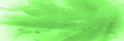 grünes lichtdurchlässiges Gewebe, gestickt mit Perlen Vervollkommnen Sie für yo Stockbild