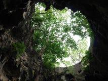 Grünes Loch Lizenzfreie Stockfotografie
