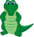 Grünes lustiges Krokodil Stockbild