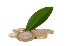 Grünes Münzenkonzept Lizenzfreie Stockfotos