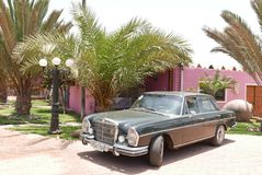 Grünes Mercedes-Benz 280S ausgestellt in Lima lizenzfreies stockfoto