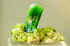 Grünes Mineral des Tourmaline stockbild
