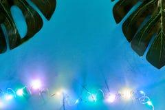 Grünes monstera verlässt auf blauem Hintergrund mit geführter Neonbeleuchtung Modischer tropischer Hintergrund für Ihre Projekte lizenzfreie stockfotografie
