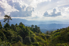 Grünes moutain - Chiang Mai, Thailand stockbilder