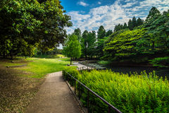 Grünes n-Blau an Singring-Park stockfotografie