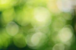 Grünes natürliches bokeh Lizenzfreies Stockfoto