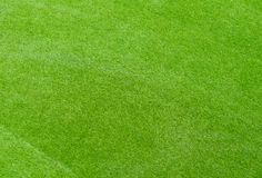 Grünes neues Yard Stockbild