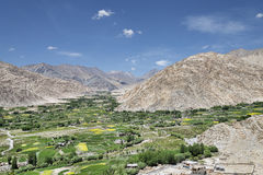 Grünes Oasendorf im Tal von Himalaja Lizenzfreies Stockfoto
