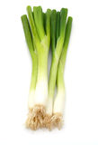 Grünes onions Stockbild