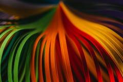 Grünes, orange und rotes Rüschenpapier kurvt Lizenzfreie Stockfotografie