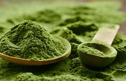 Grünes organisches Detoxpulver Wheatgrass lizenzfreies stockfoto