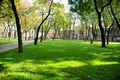 Grünes parkland Stockfotografie
