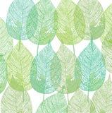 Grünes Pflanzenblättermuster Lizenzfreie Stockfotos
