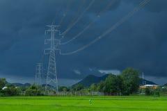 Grünes Reisfeld mit starkem strom Hintergrund Lizenzfreies Stockbild