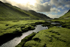 Grünes Schottland-Tal im Frühjahr Lizenzfreie Stockbilder