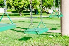 Grünes Schwingen Stockbilder