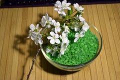 Grünes Seesalz für Badezimmer Lizenzfreie Stockfotos