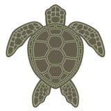 Grünes Seeschildkröte lizenzfreie abbildung