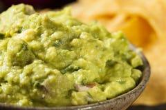 Grünes selbst gemachtes Guacamole mit Tortilla-Chips Stockfotografie