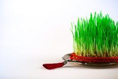 Grünes semeni auf der Weinleseplatte, verziert mit rotem Band der Torsion und roter Quaste Lizenzfreie Stockbilder