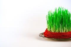 Grünes semeni auf der Weinleseplatte, verziert mit rotem Band der Torsion und roter Quaste Lizenzfreies Stockfoto
