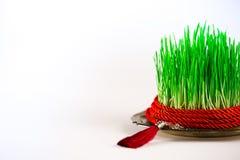 Grünes semeni auf der Weinleseplatte, verziert mit rotem Band der Torsion und roter Quaste Stockbild