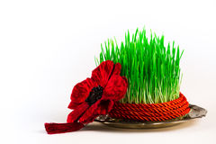 Grünes semeni auf der Weinleseplatte, verziert mit rotem Band der Torsion und roter Quaste Lizenzfreie Stockfotografie