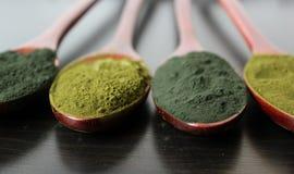 Grünes Spirulina und Chorella Stockfotografie