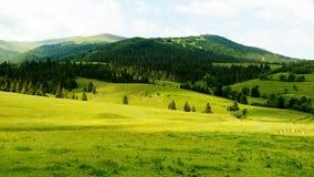 Grünes Tal in den Bergen gestalten landschaftlich stockfoto