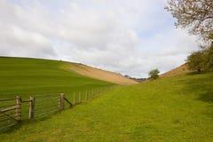 Grünes Tal im Frühjahr Lizenzfreie Stockfotos