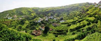 Grünes Tal von Brava Stockbilder
