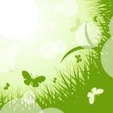 grünes Thema des Frühling-Sommers Lizenzfreie Stockbilder