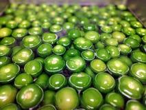 Grünes Tomatillo in einem Wasserbad Lizenzfreie Stockbilder