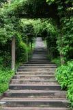 Grünes Treppenhaus lizenzfreies stockfoto