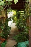 Grünes Treppenhaus zu einem Privathaus Stockbild