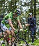 Grünes Trikot - Peter Sagan Stockbilder
