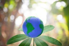 Grünes Umweltkonzept Stockbilder