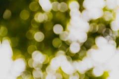 Grünes und gelbes undeutliches bokeh Lizenzfreie Stockbilder