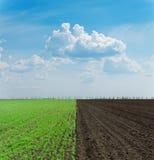 Grünes und schwarzes gepflogenes Feld Stockbilder