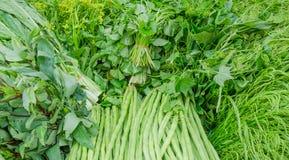 Grünes vegatble Lizenzfreie Stockbilder