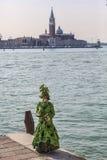 Grünes venetianisches Kostüm Stockbild