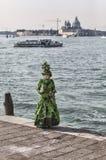 Grünes venetianisches Kostüm Stockbilder