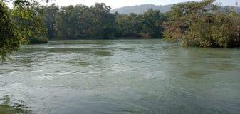 grünes Wasser lizenzfreie stockbilder