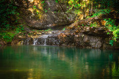 grünes Wasser Stockfotografie