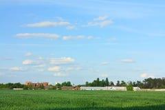 Grünes Weizen-Feld, blaues Skyand und alter Bauernhof Stockbilder